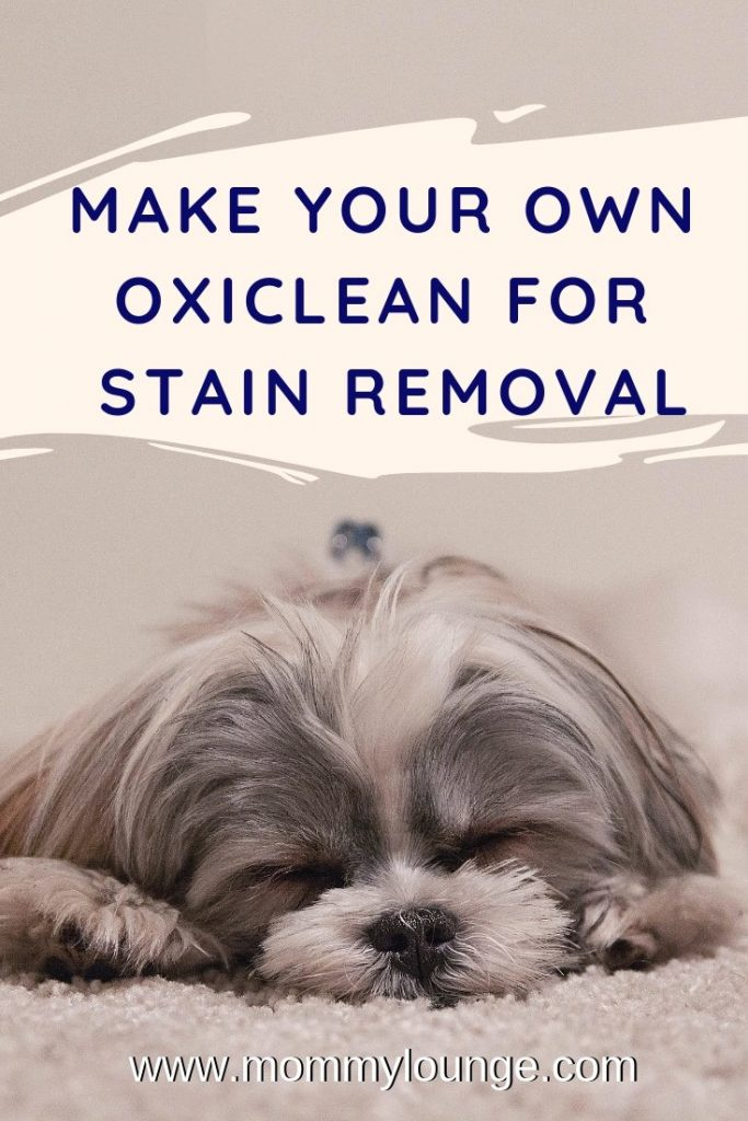 Homemade Oxiclean - DIY Oxiclean Recipe